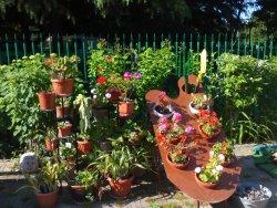Фракийский сад!