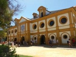 Real Escuela Andaluza Del Arte Ecuestre