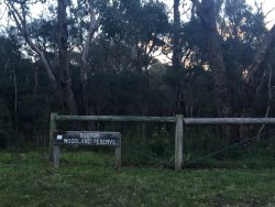 Buxton Woodland Reserve