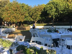Wente Vineyards Estate Winery