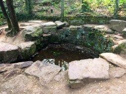 Tombeau de Merlin / Fontaine de Jouvence