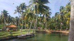 Lush green resort near mangroves and sea