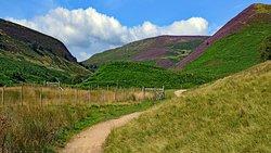 The Upper Derwent Valley