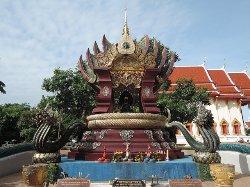 Si Maha Pho Tree