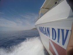 Morgan Diving