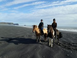 Dyrholaey Riding tours