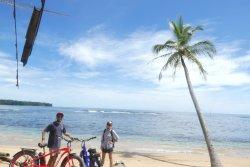 Bocas Ebikes