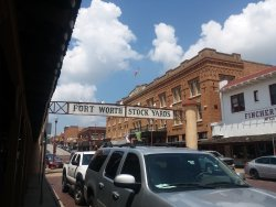 Ft. Worth Stockyard Stables