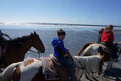 Back Country Horse Rides