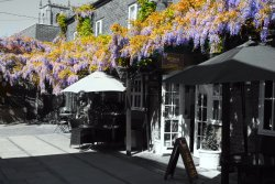 Wisteria Tea Room