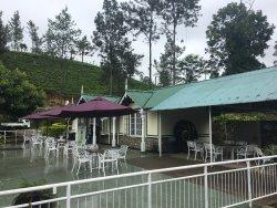 Somerset Estate Tea Center