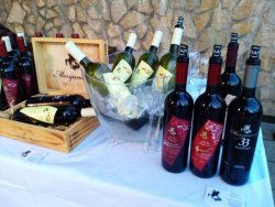 Winery Marijanovic