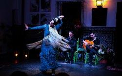 La Casa del Flamenco - Auditorio Alcántara