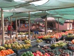 Zamimpilo Community Market