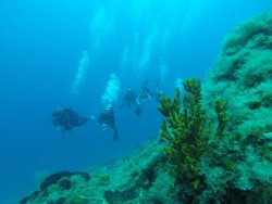 Zoumbosub Diving Center