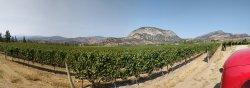 Panoramic shot of Covert Farm Winery