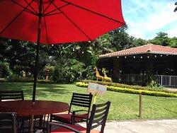 Angeli Gardens