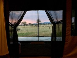 Amazing tents, luxury, clean and full of every comforts. Sleeping there is just one of the most