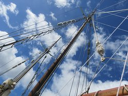 Tallship Adventures-Derwent Hunter Day Tours