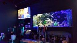 Bella Blue bar