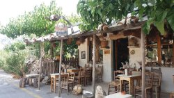 Wild Herbs of Crete