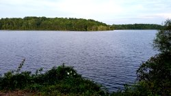 Lake Brandt Trails