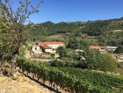 Azienda Agricola Baberis Bruno