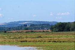 Pulborough Brooks RSPB