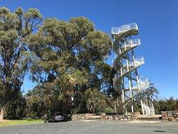 DNA Tower Climb
