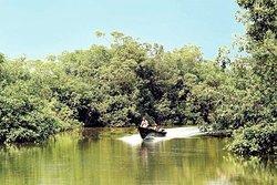 Akanda National Park
