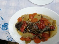 We have enjoyed our lunch at this place. The fish was caught by the owners son with a harpun. A