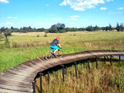 Rosemary Hill Mountain Bike Park