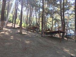 Sogukoluk (Guzelyayla) Piknik Alani