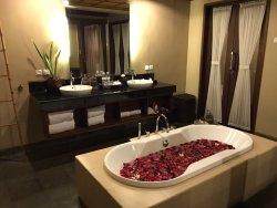 Nyuh Bali The Kingdom 😊