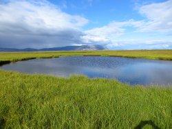 The Floi Bird Reserve