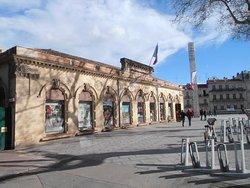 Office de Tourisme & des Congrès Montpellier Méditerranée Métropole