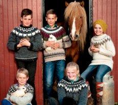 Hradastadir Horse Riding & Farm