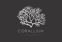 Corallium Milano Ristorante