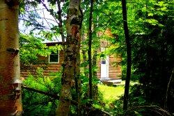 Wild Fox Cabins