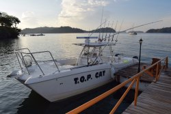 Sport Fish Panama Island Lodge - Day Charters