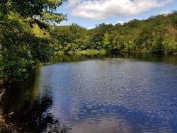 Lucius Pond Ordway / Devil's Den Preserve