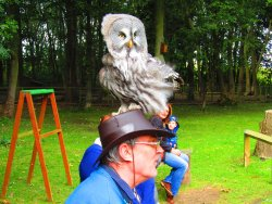 Bridlington Birds of Prey & Animal Park