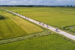 Hoian Cycling