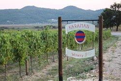 Malvasija Karaman Winery