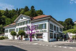 Boutique Hotel Bad Kyburg