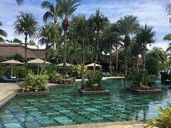La piscine du Frangipani