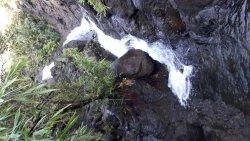 Pundaquit Falls