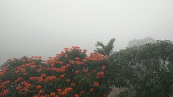 Woow......  Excellent Resorts in Munnar...