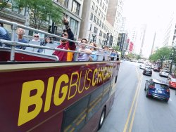 ‪BigBus Chicago‬