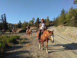 A&E Elpida Ranch